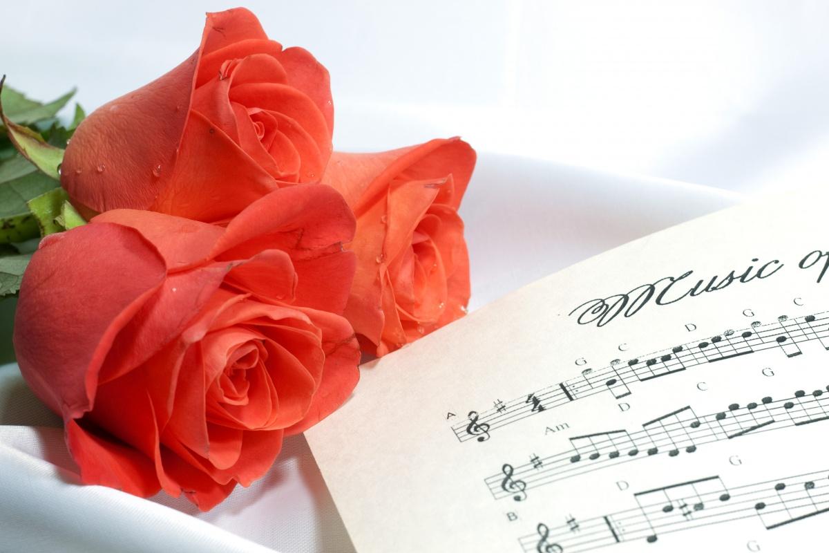Поздравить музыкального работника с днём рождения
